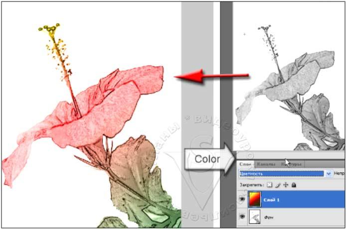 режим Color (Цветность)
